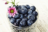 Fresh Washed Blueberries in a Glass; Pink Flower