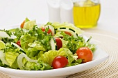 Mixed Green Salad with Tomatoes and Cucumbers on a White Dish