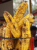 Colombian Mazorca (Roasted Corn); Street Food in Bogota Colombia
