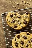Chocolatechip Cookies auf Kuchengitter