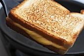 Cheese toast sandwich