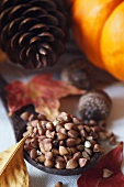 Roasted Kasha on Wooden Spoon; Autumn Leaves, Acorns, Pine Cone and Pumpkin