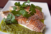 Salmon With Tomatillo Salsa on a White Plate