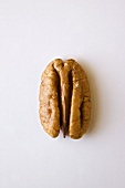 A Single Pecan on White Background