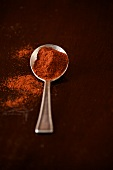 Spoonful of Red Paprika; Some Spilled