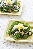 Two Servings of Spinach Salad