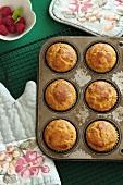 Frisch gebackene Muffins beim Abkühlen im Muffinblech