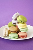 Multi-Colored Macaroons on a Plate