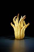 Buddhas Hand (Fingered Citron)