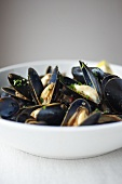 Bowl of Mussels with White Wine, Garlic and Tomato Broth