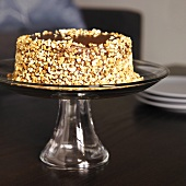 Chocolate Peanut Butter Cake with Crushed Peanuts on the Side