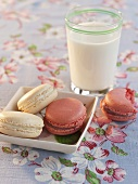Two Raspberry and Two Vanilla Macaroon Cookies with a Glass of Milk