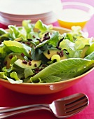 Green Leaf Salad with Avocado and Chocolate Nibs