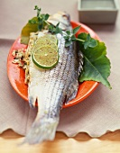 Baked Stuffed Rock Fish with Lime Slice Garnish
