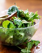 Mixed Green Salad in a Clear Glass Bowl