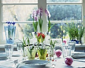 Spring flowers arranged on a table