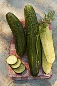 Fresh cucumbers, whole, halved and slices, on tea towel