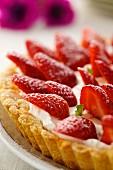 Crostata di fragole (Erdbeertarte, Italien)