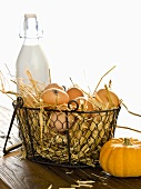 Organic eggs in a wire basket, a bottle of milk and a pumpkin