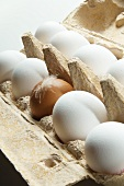 Brown and White Eggs in a Cardboard Egg Carton