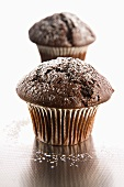Two chocolate muffins with icing sugar