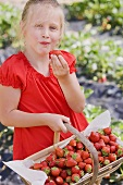 A girl in a garden eating strawberries
