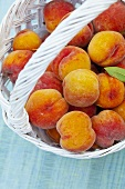 Fresh peaches in a basket