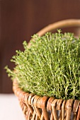 A basket of thyme