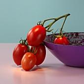 Plum tomatoes on the stem