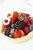 A berry and jelly tartlet