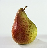 A pear against a white background