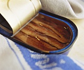 Anchovy fillets in the tin