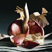 A peeled garlic bulb