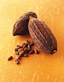 Whole cacao fruits with cocoa beans