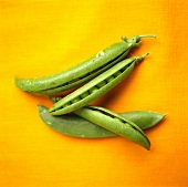 Four pea pods on orange background