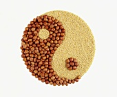 Hazelnuts and millet as Yin-Yang symbol for earth