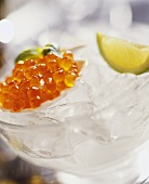Salmon caviare and wedge of lime on ice