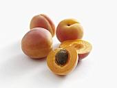 Four apricots