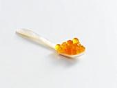 Trout caviare in a spoon
