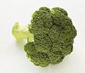 A broccoli floret