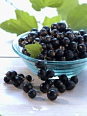 Blackcurrants in and in front of small glass bowl