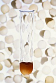 Egg yolk in test tube