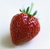 Eine frische Erdbeere