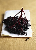Elderberries on kitchen paper