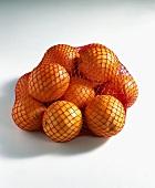 Orangen (Citrus sinensis) im Netz