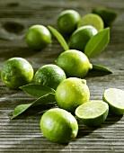 Limequats (cross: kumquat and lime)