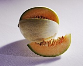 Musk melon (Cucumis melo), variety: Jolly