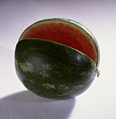 Wassermelone (Citrullus lanatus), klein, Sorte Coco Baby