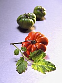 Red tomato with leaf in front of two green tomatoes