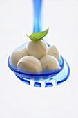Baby mozzarella in plastic ladle